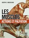 Les muscles : actions et palpation