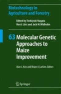 Molecular Genetic Approaches to Maize Improvement