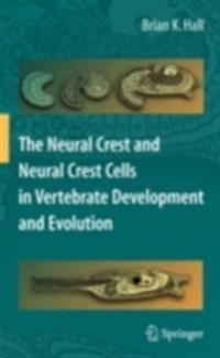 Neural Crest and Neural Crest Cells in Vertebrate Development and Evolution
