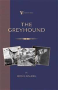 Greyhound: Breeding, Coursing, Racing, etc. (a Vintage Dog Books Breed Classic)