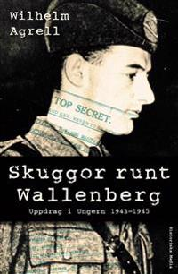Skuggor runt Wallenberg