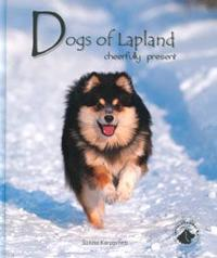 Dogs of Lapland-Cheerfully present