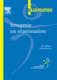 Imagerie en reanimation