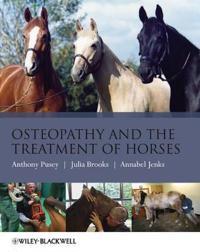 Osteopathy Treatment Horses