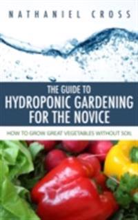 Guide To Hydroponic Gardening For The Novice
