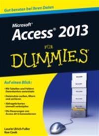Access 2013 f r Dummies