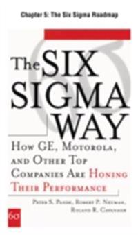 Six Sigma Way, Chapter 5