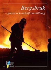 Bergsbruk : gruvor och metallframställning