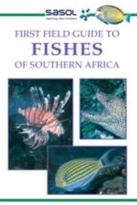 First Field Guide to Fishes of Southern Africa