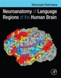 Neuroanatomy of Language Regions of the Human Brain