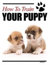 How to Train Your Puppy