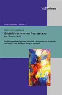 Geisterfahrer Zwischen Transzendenz Und Immanenz: Die Erfahrungsbegriffe in Den Pfingstlich-Charismatischen Theologien Von Terry L. Cross Und Amos Yon