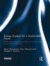 Energy Analysis for a Sustainable Future