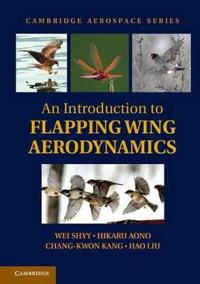 Introduction to Flapping Wing Aerodynamics