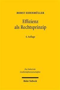 Effizienz ALS Rechtsprinzip: Moglichkeiten Und Grenzen Der Okonomischen Analyse Des Rechts
