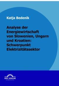 Analyse der Energiewirtschaft von Slowenien, Ungarn und Kroatien: Schwerpunkt Elektrizitatssektor