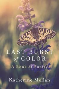 Last Burst of Color