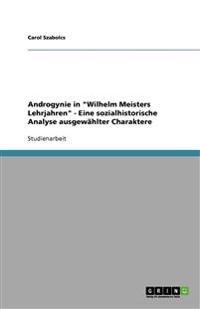 """Androgynie in """"Wilhelm Meisters Lehrjahren"""" - Eine Sozialhistorische Analyse Ausgewahlter Charaktere"""