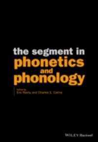 Segment in Phonetics and Phonology