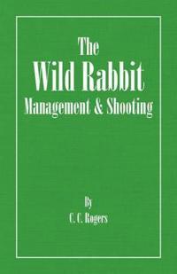 The Wild Rabbit