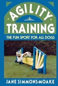 Agility Training
