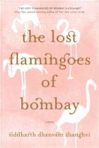 Lost Flamingoes of Bombay