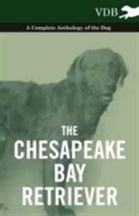 Chesapeake Bay Retriever - A Complete Anthology of the Dog -