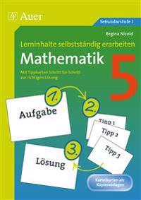 Lerninhalte selbstständig erarbeiten Mathematik 5