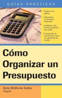 Como Organizar un Presupuesto