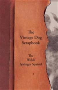 Vintage Dog Scrapbook - The Welsh Springer Spaniel