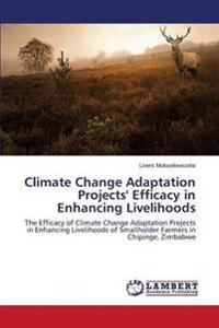 Climate Change Adaptation Projects' Efficacy in Enhancing Livelihoods