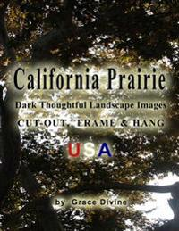 California Prairie Dark Thoughtful Landscape Images Cut-Out, Frame & Hang USA