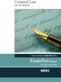 exam pro essay on criminal law