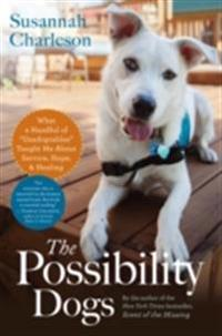 Possibility Dogs