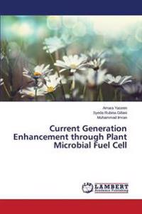 Current Generation Enhancement Through Plant Microbial Fuel Cell