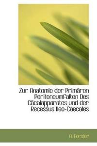 Zur Anatomie Der Primaren Peritoneumfalten Des Cacalapparates Und Der Recessus Ileo-Caecales