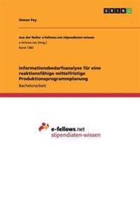 Informationsbedarfsanalyse Fur Eine Reaktionsfahige Mittelfristige Produktionsprogrammplanung