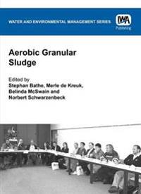 Aerobic Granular Sludge