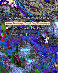 Psychodelic Photoshopped Images Nature Landscape Tree & Leaf Photography: Wild California Fig Trees Los Angeles County, California