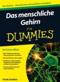 Das menschliche Gehirn f r Dummies