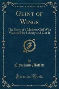 Glint of Wings