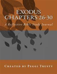 Exodus, Chapters 26-30: A Reflective Bible Study Journal