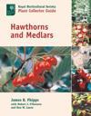 Hawthorns and Medlars