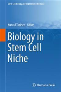 Biology in Stem Cell Niche