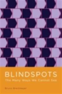 Blindspots: The Many Ways We Cannot See