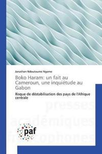 Boko Haram: Un Fait Au Cameroun, Une Inquietude Au Gabon