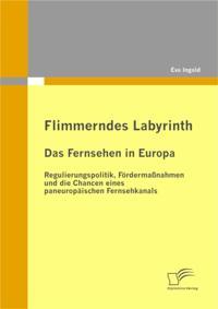 Flimmerndes Labyrinth: Das Fernsehen in Europa  - Regulierungspolitik, Fordermanahmen und die Chancen eines paneuropaischen Fernsehkanals