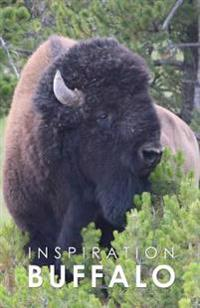 Inspiration Buffalo: Notebook Inspiration Pad