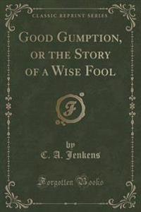Good Gumption, or the Story of a Wise Fool (Classic Reprint)