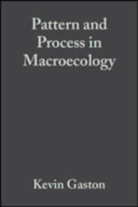 Pattern and Process in Macroecology